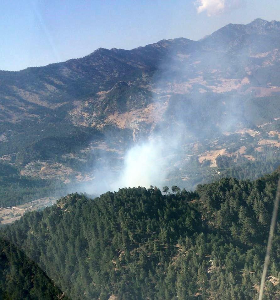 Kahramanmaraş'ta orman yangınında 4 hektar alan zarar gördü