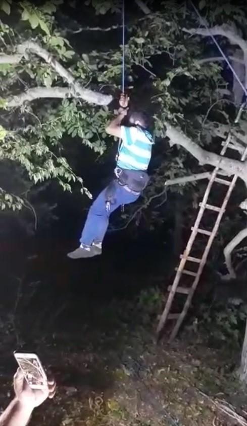 Ceviz dökmek için çıktığı ağaçta mahsur kaldı, AFAD kurtardı