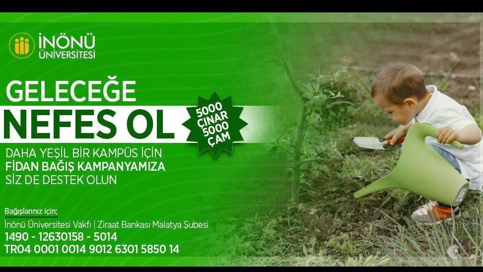 5 bin çınar 5 bin çam fidan bağışı kampanyası