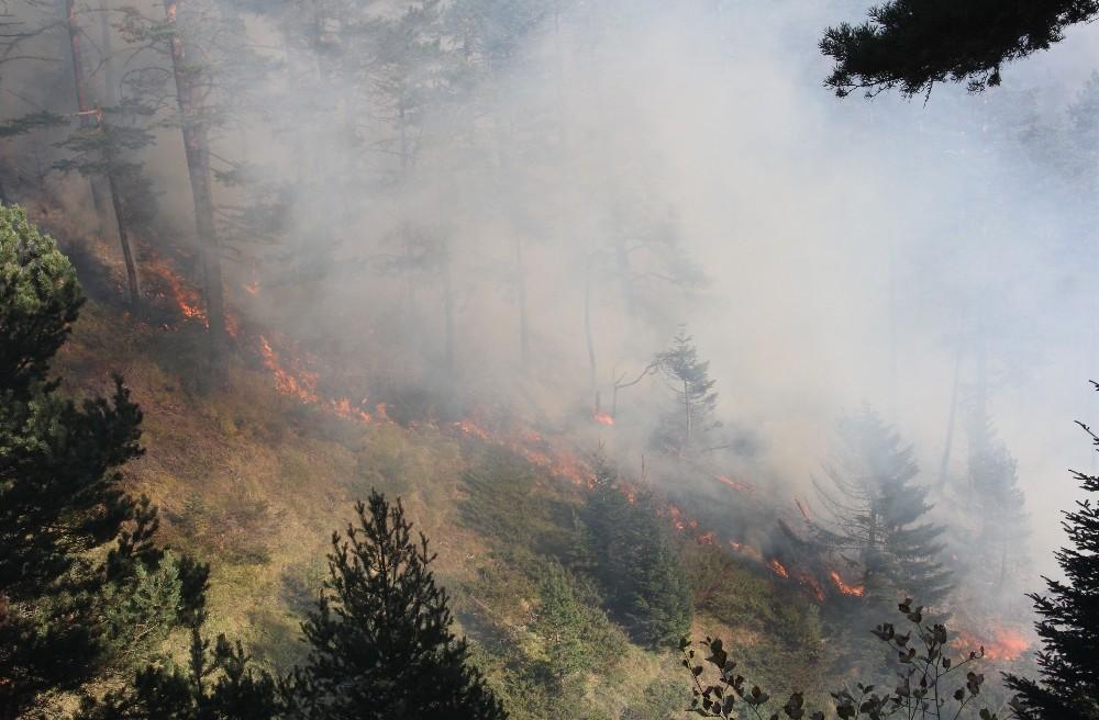 Kastamonu'da iki farklı noktada 3 gündür devam eden orman yangını söndürülemiyor