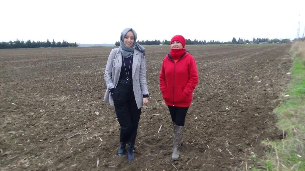 Özel Kadın çiftçiler, bamya için kolları sıvadı
