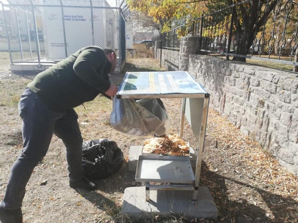 Kars'ta belediye sokak hayvanlarını unutmadı - Kars Haberleri