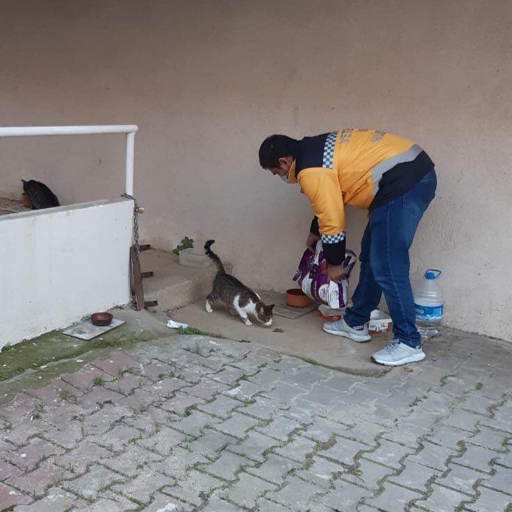 Eyüpsultan'da sokak hayvanları unutulmuyor