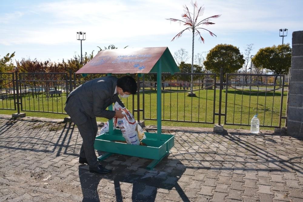 Ergani Belediyesi sokak hayvanlarını yalnız bırakmadı
