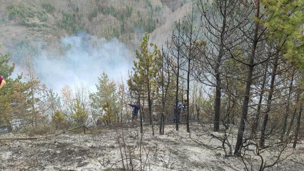Fındık bahçesinde yakılan anız ormana sıçradı, yangına müdahale ediliyor