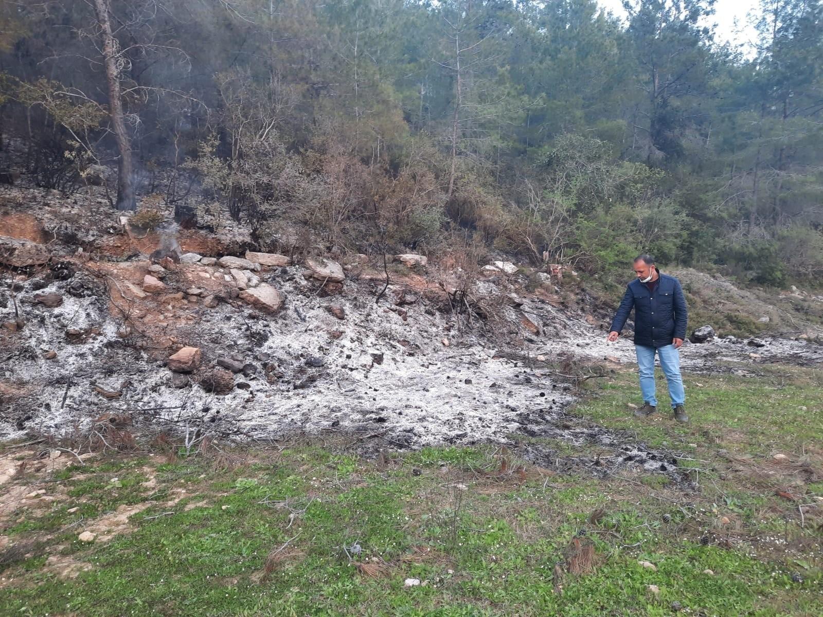 Bahçe temizliği sonrası yakılan ateş hem ormanı hem kaplumbağayı yaktı