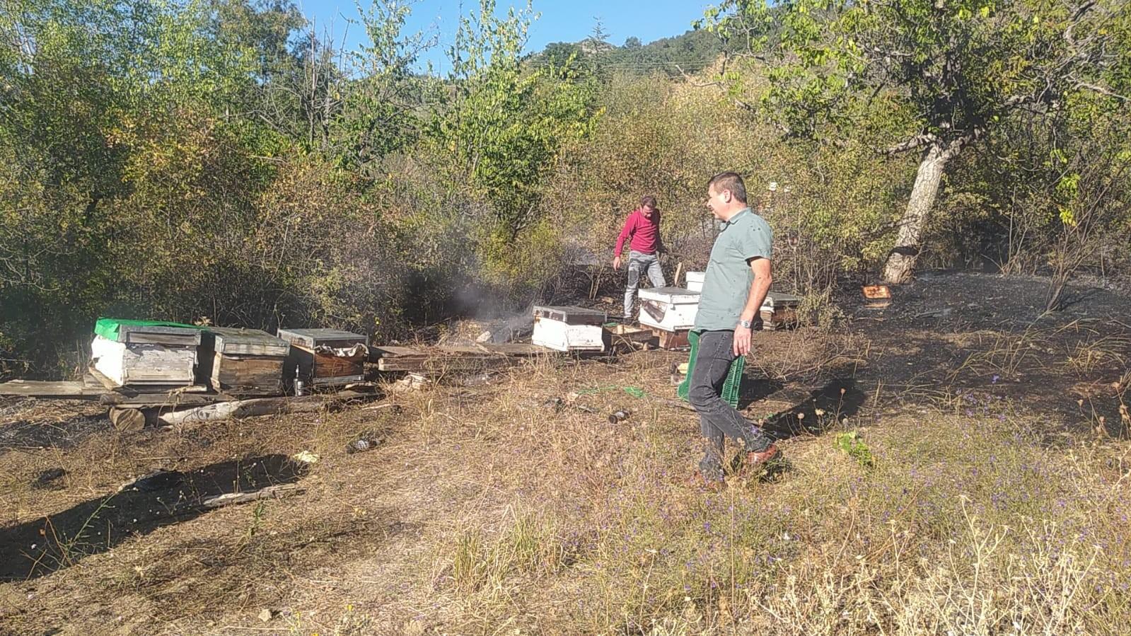 Bahçede çıkan yangın arı kovanlarını etkiledi