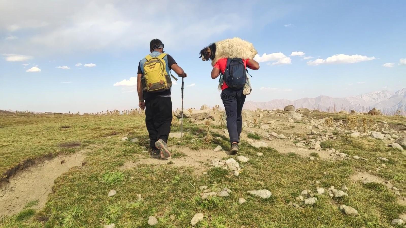Yüksekovalı dağcılar, dağda buldukları oğlağı sırtlarında taşıyıp sahibine teslim ettiler #hakkari