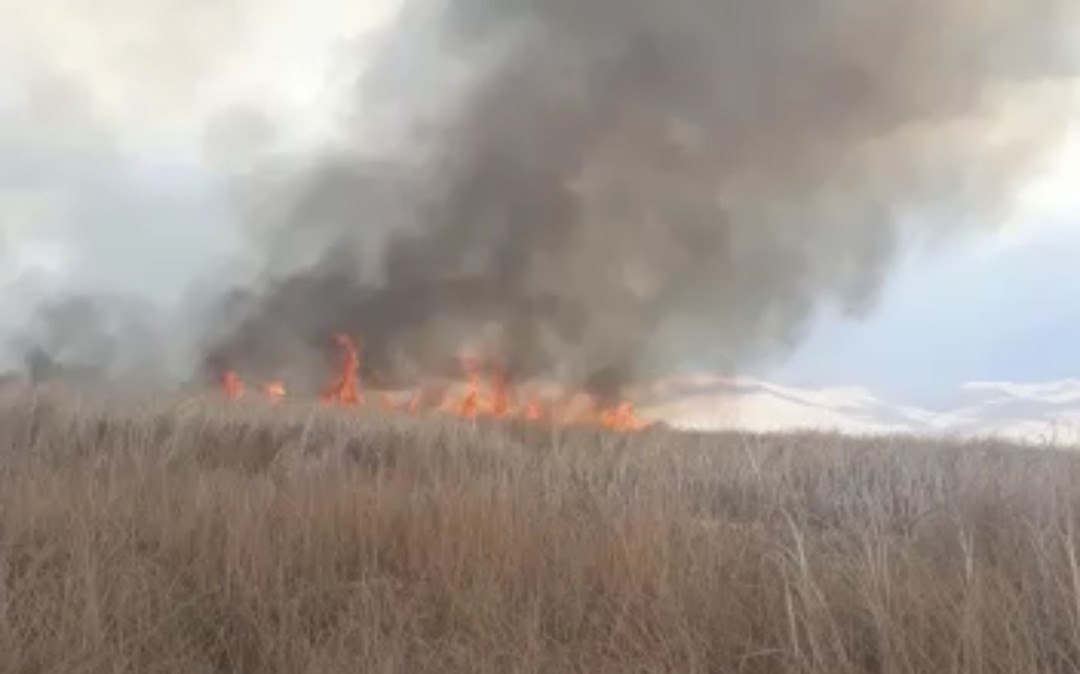 Yüksekova'daki Nehil Sazlığı'nda yangın #hakkari