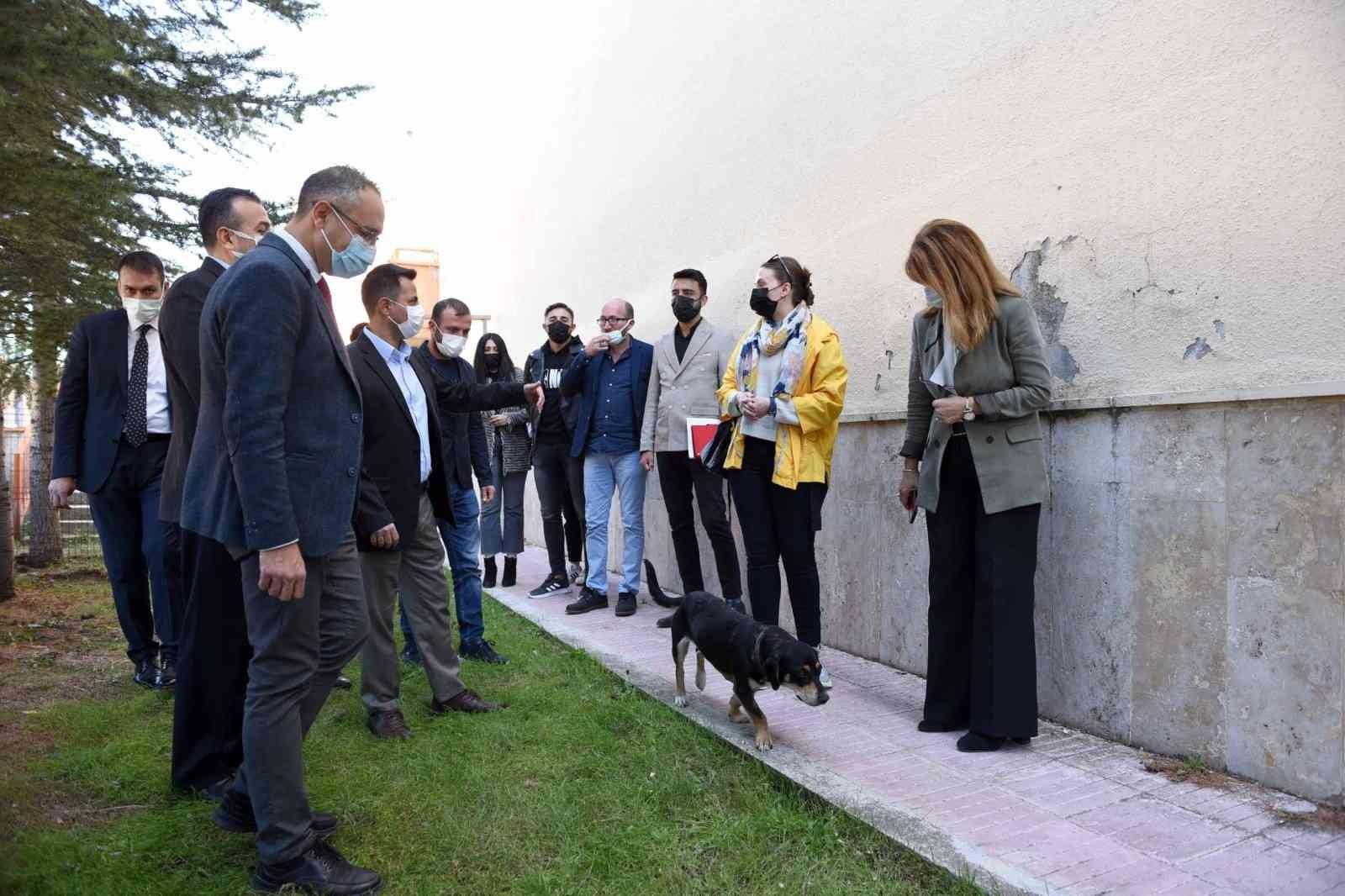 Hitit Üniversite'sinde 'Köpek Evi' projesi hayata geçirildi #corum