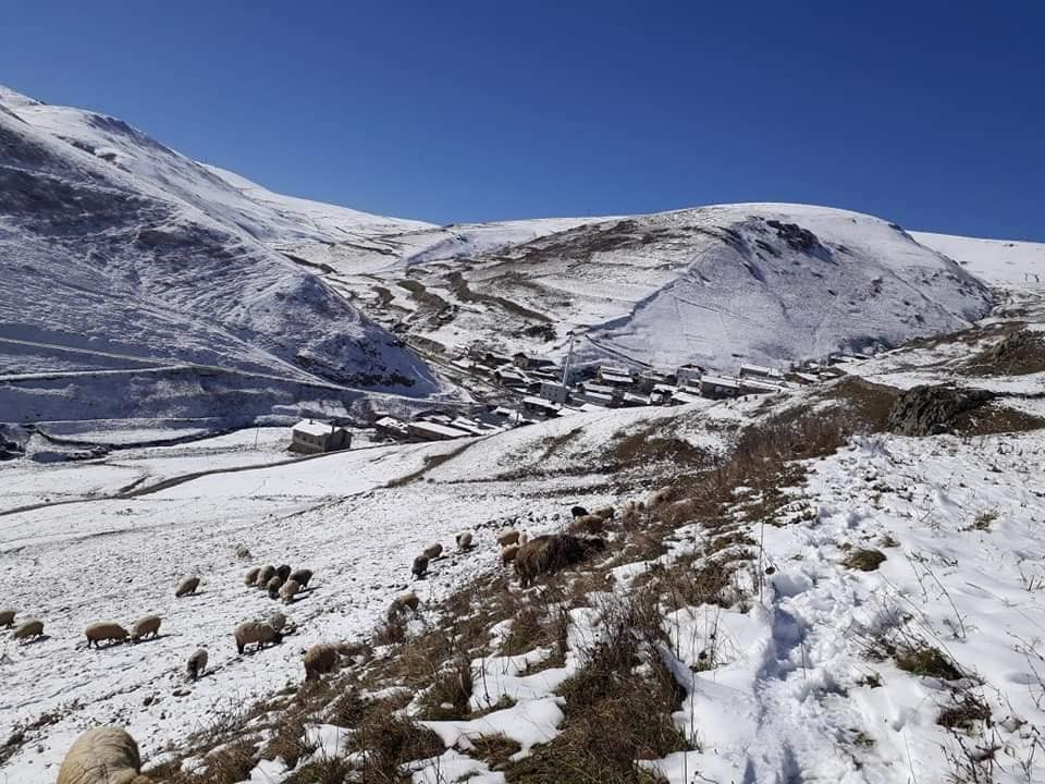 Soğanlı Dağı eteklerinde kardan kapanan köy ve yayla yolları yeniden ulaşıma açıldı #bayburt