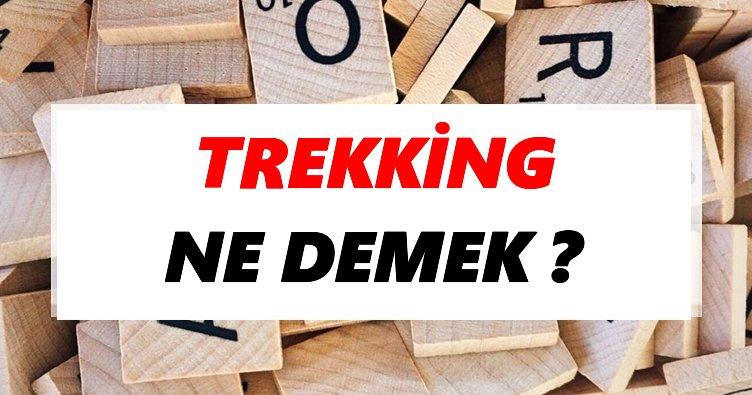 Trekking Ne Demek? TDK'ya Göre Trekking Sözlük Anlamı Nedir?