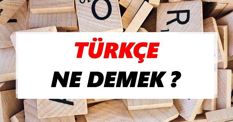 Türkçe ne demek? Türkçe TDK sözlük anlamı - Tdk Anlamı Haberleri
