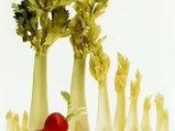 Kereviz Apium graveolens nelere iyi gelir? Kerevizin Apium graveolens faydaları nelerdir?