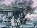 Yeşil çay (Camellia sinensis) nelere iyi gelir? Yeşil çayın (Camellia sinensis) faydaları nelerdir?
