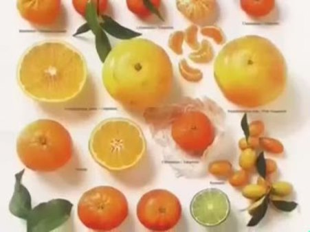 Portakal (Citrus sinensis) nelere iyi gelir? Portakalın (Citrus sinensis) faydaları nelerdir?