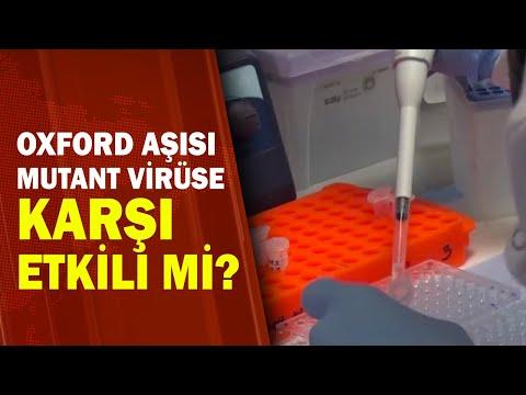 Aşılar Güney Afrika Varyantına Karşı Koruyor mu?