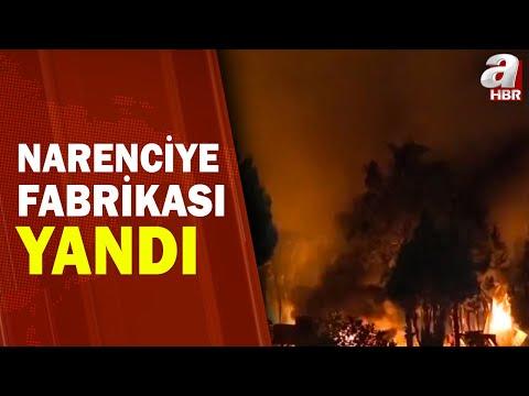 Mersin'de Narenciye Fabrikasını Alevler Sardı