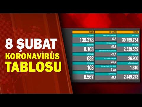 Türkiye'nin 8 Şubat Koronavirüs Bilançosu